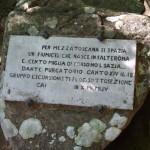 Casentino Falterona Falco 6192