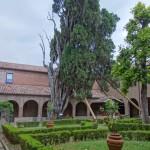 Cipresso di San Francesco - Villa Verucchio