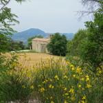 Convento di Sant'Igne Cresta dei Tausani San Leo-247