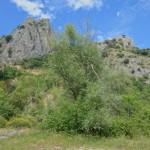 Cresta dei Tausani San Leo-351