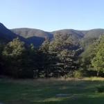 La Lama - Parco Casentino (3)