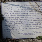 Maioletto 16