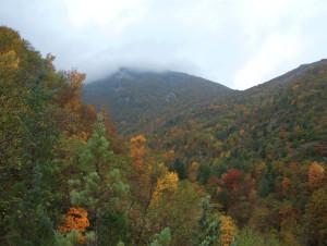 Monte Nerone 280