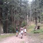 Parco Casentino (2)