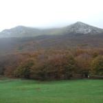 Parco Monte Cucco_201