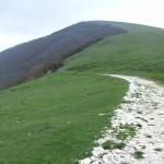 Parco Monte Cucco_263