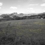 Rocca di Maioletto-2055
