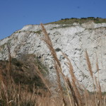 Vena del Gesso - Cava di Monticino_1160