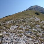 Il Catria-2981 - Monte Acuto