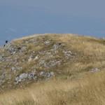 Il Catria-3023 - Monte Acuto