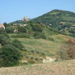 Veduta di Farneto e Montefiore-774