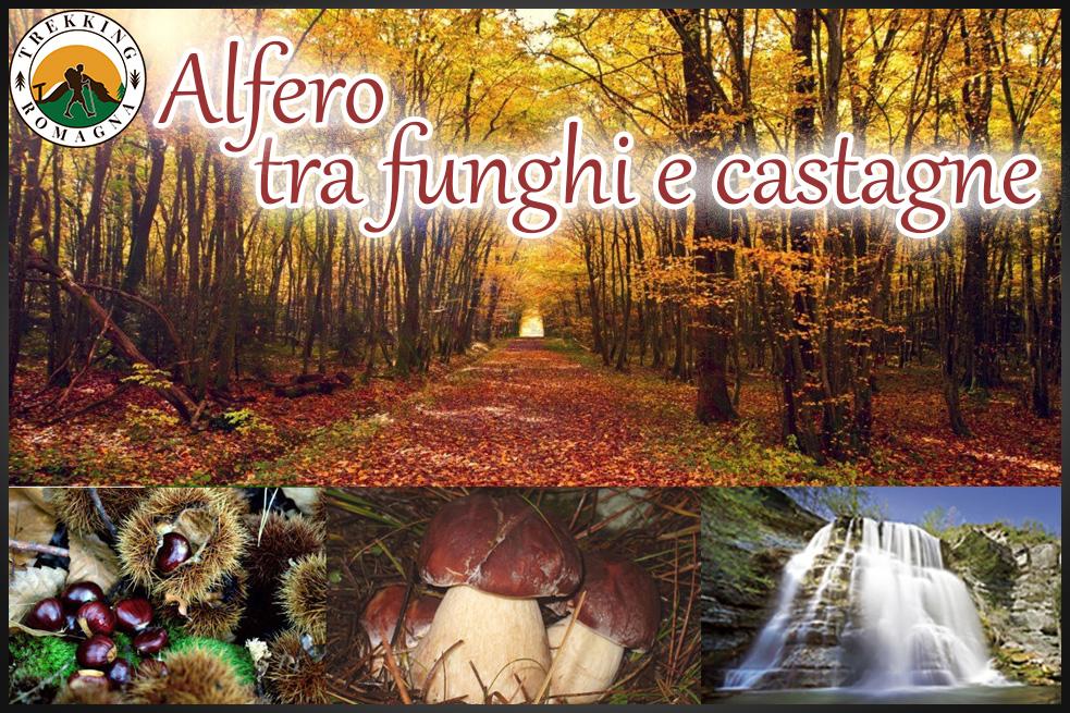 Evento-2019.10.13-Alfero